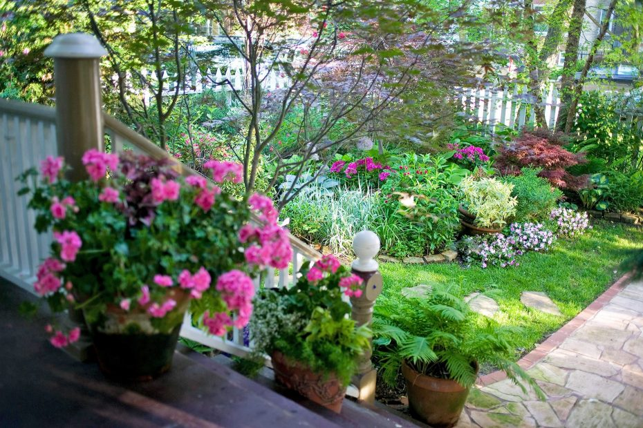 How To Keep Your Garden Healthily?